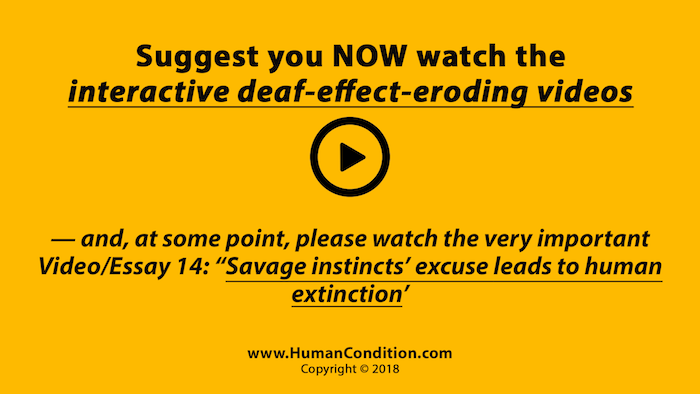 Video/Freedom Essay 13 | The WTM Deaf Effect Course